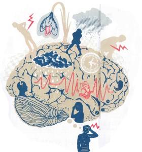 test brain