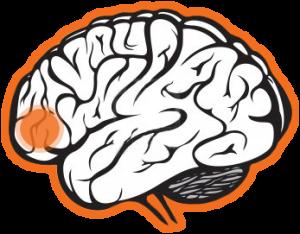 transtorno comprometimento cognitivo leve CCL avaliacao neuropsicologica cognitiva 58