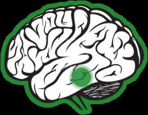 transtorno comprometimento cognitivo leve CCL avaliacao neuropsicologica cognitiva 60