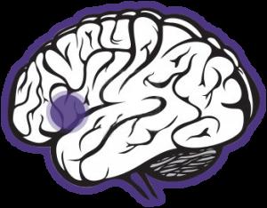 transtorno comprometimento cognitivo leve CCL avaliacao neuropsicologica cognitiva 61