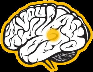 transtorno comprometimento cognitivo leve CCL avaliacao neuropsicologica cognitiva 62